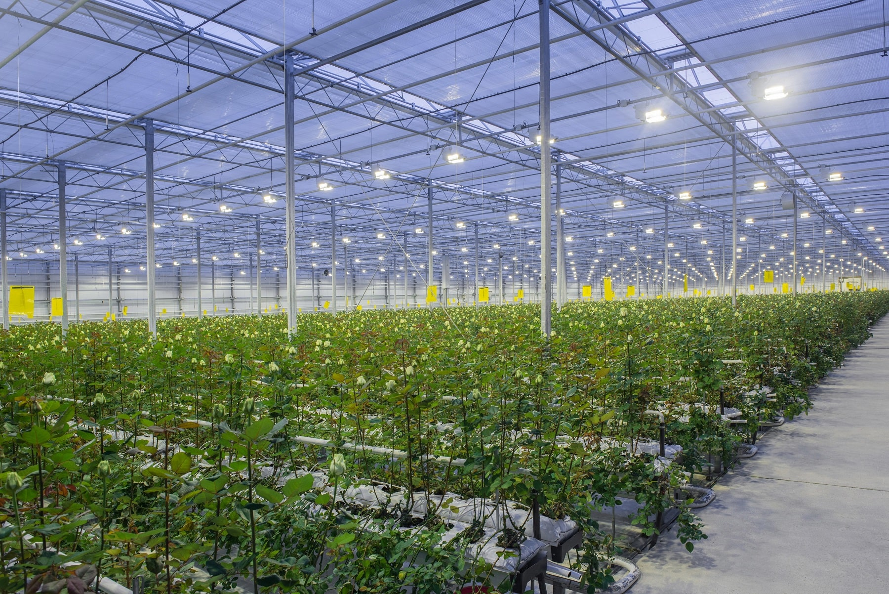 Smart Agriculture connectors